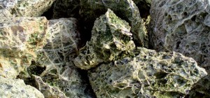 SPAGHETTI GREEN 2