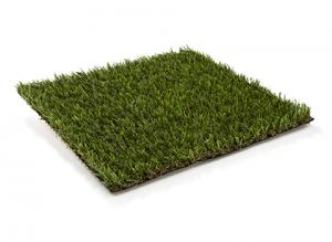 coco_grass