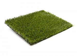 viana_grass